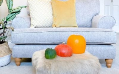 Soften up with Sheepskin read more